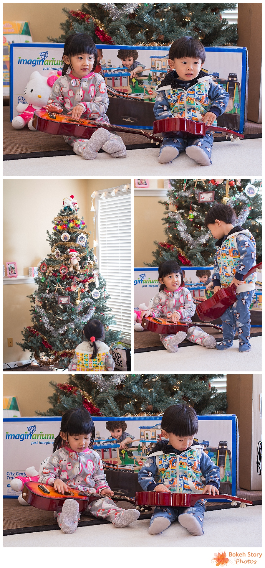 2013 Christmas Photos
